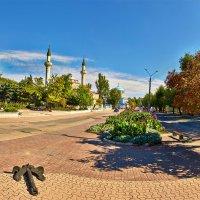 Вид на мечеть и собор :: Александр Хайленко