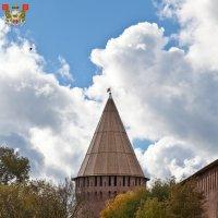 Смоленская крепость. Заалтарная (Белуха, башня круглая Авраамиевская, Золотарная) башня :: Алексей Шаповалов Стерх