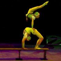 Дети на арене цирка :: Владимир Максимов