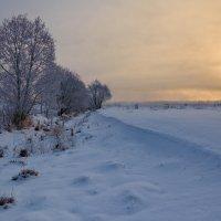 Томление зимнего солнца... :: Roman Lunin