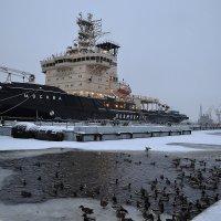 Корабли :: Наталья Левина