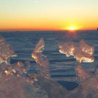 Морозная свежесть. :: Юля Елисеева
