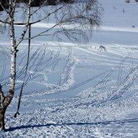 На холмах. :: Дмитрий Арсеньев