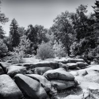 Сад камней :: Вахтанг Хантадзе
