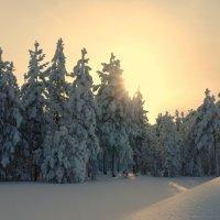 Марина Зайнутдинова - Снежное безмолвие