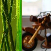 Мотоцикл :: Мария Юртаева