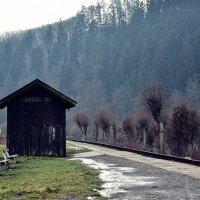 Станция в лесу :: Рустам Гаджиев
