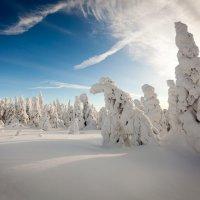 Снег и горы. :: Владимир Кочкин