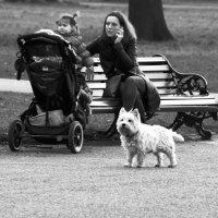 В парке :: Дмитрий Ланковский