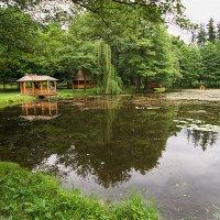 Есть в графском парке чёрный пруд :: Василий Каштанюк