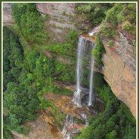 Водопад в Голубых Горах :: Евгений Печенин