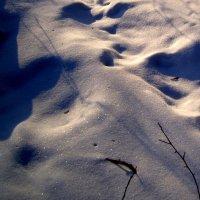 Разноцветный снег :: Маргарита N