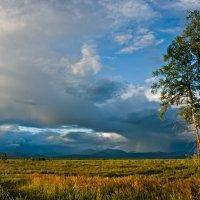 Дождь крадется из-за гор :: Алексей Вуколов