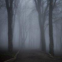 Dark forest :: Андрей Лободин