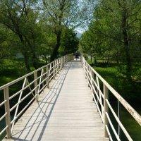 Сельский мостик :: Виктория Попова