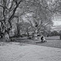 На Приморском бульваре. В предверии весны... :: Вахтанг Хантадзе