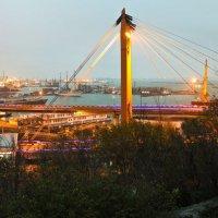 Одесский порт :: Дмитрий Стамиков