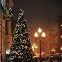 Арбат 1 :: Любовь Миргородская