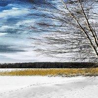 Весна идёт ! :: Алла Мещерякова