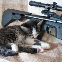 солдат спит - служба идёт :: Лана Lana