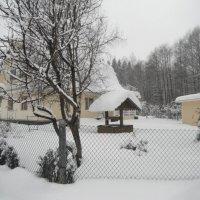 зима в подмосковье :: нина полянская