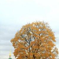 Осень золотая :: Вадим Лячиков