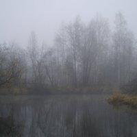 Утро. Осень. Туман :: Сергей Комков
