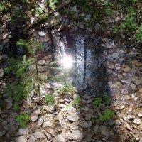 Немного солнца в холодной воде :: Сергей Комков