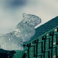 Кусочек льда :: Dasha Swarovski