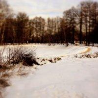 Прогулка в парке :: Евгений Жиляев