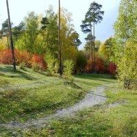 осень там- где живу :: валерий телепов
