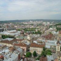 Любимый город-Львов :: Дмитрий Кулинич