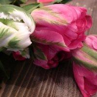 тюльпаны :: Ната Иванова