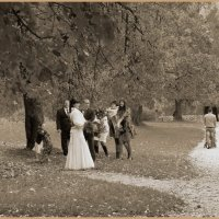 Свадьба.Случайный кадр(1) :: Татьяна Ямкова