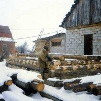 стройка хозспособом :: Леонид Виноградов