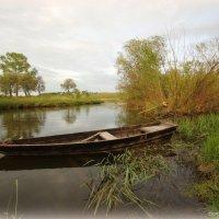 Старая лодка :: Наталья Аракчеева