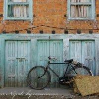 Courtyard with a bicycle :: Анастасия Кононенко