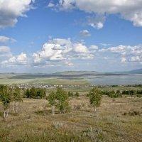 д.Черное озеро :: Андрей Еськов