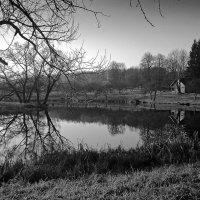 Сельский пейзаж :: Тимур Шевчук