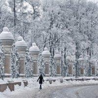 Зимняя сказка :: Ольга Тихомирова
