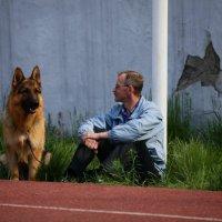 Выставк собак 2012 :: Андрей Юзеев