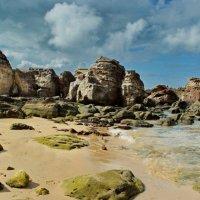 Камни на берегу :: Елена Левковская