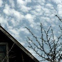 Крыша дома моего :: Ирина Татьяничева