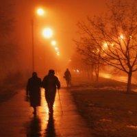 Зимний туман. :: Валерий Дубровин