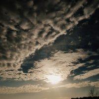Небо, небо... :: Саша Матвіюк