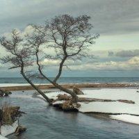 Балтика.Зимний пейзажик. :: Павел Дунюшкин