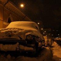Сквозь снега... :: Ольга Тихомирова