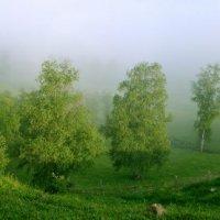 туман отступает :: Pavel King