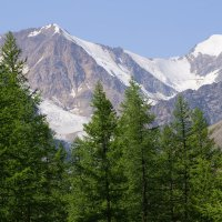 Вершины Алтая :: Наталия Григорьева