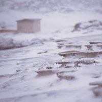 winter :: Yuliya Kaminskaya